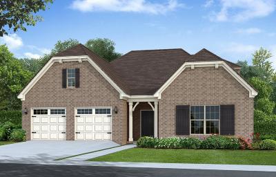 Hendersonville Single Family Home For Sale: 738 Canter Lane - Lot 448