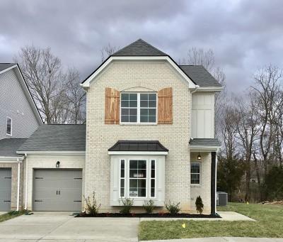 Spring Hill Single Family Home For Sale: 131 Bellagio Villas Dr Lot 17