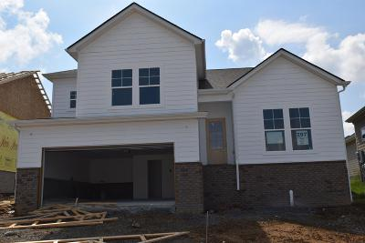 Nolensville Single Family Home Active Under Contract: 1317 Duns Lane #295