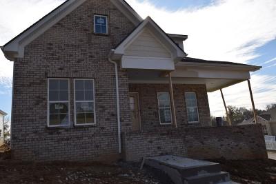 Nashville Single Family Home For Sale: 6025 Mt Pisgah Rd. #23