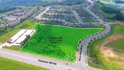 Clarksville Commercial For Sale: 1 Peachers Mill Rd