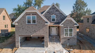 Spring Hill  Single Family Home For Sale: 6035 Spade Drive Lot 205