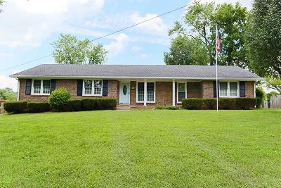 Smyrna Single Family Home Active Under Contract: 507 Moore Ave