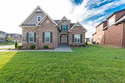 Spring Hill Single Family Home For Sale: 6001 Spade Drive #191
