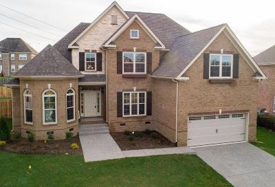 Spring Hill Single Family Home For Sale: 6011 Spade Drive Lot 196