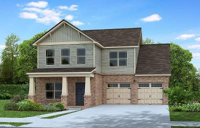 Sumner County Single Family Home For Sale: 219 Telavera Drive, Lot 234