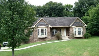 Hendersonville Single Family Home For Sale: 1045 Burnham Dr S
