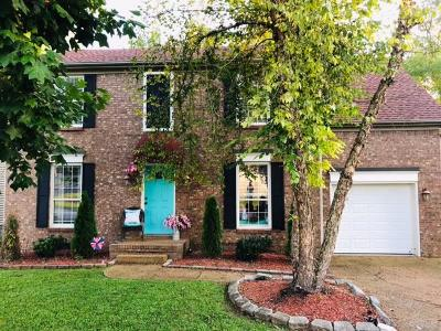Hendersonville Single Family Home For Sale: 161 S Birchwood