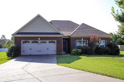 Sumner County Single Family Home For Sale: 228 Skirving Ter