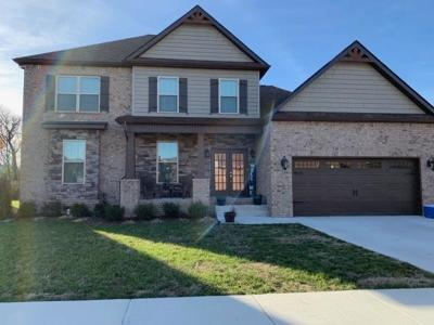 Spring Hill Single Family Home For Sale: 7 Summer Meadows