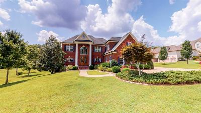Hendersonville Single Family Home For Sale: 305 Hunters Lane