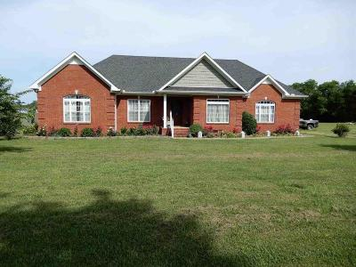Marshall County Single Family Home For Sale: 4106 Lillie Field Ln