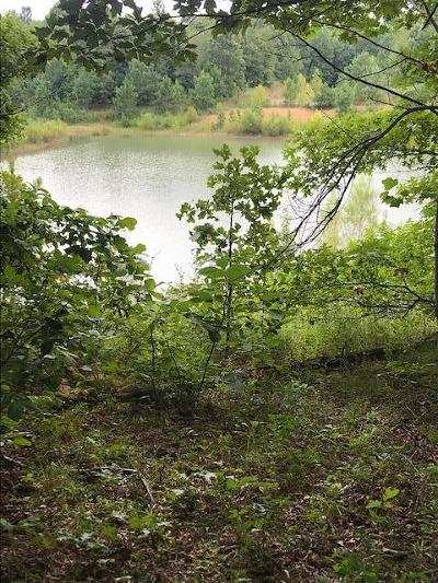 Residential Lots & Land For Sale: 31 Aerie Lake Circle