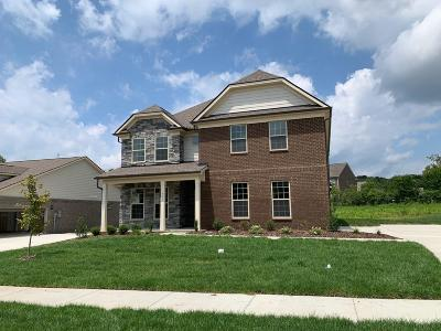 Hendersonville Single Family Home For Sale: 421 Norman Way #8