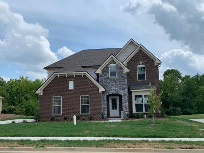 Hendersonville Single Family Home For Sale: 412 Norman Way # 89
