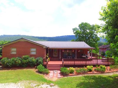 Grundy County Single Family Home For Sale: 2541 Chestnut Grove Rd