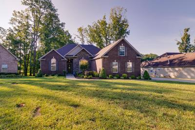 Sumner County Single Family Home For Sale: 420 Artesa Dr