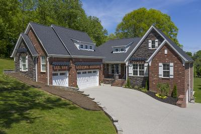 Franklin Single Family Home For Sale: 2242 Brienz Valley Dr