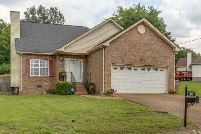 Nashville Single Family Home For Sale: 3060 Chateau Valley Dr