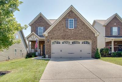 Mount Juliet Single Family Home For Sale: 365 Dunnwood Loop