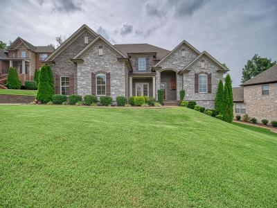 Hendersonville Single Family Home For Sale: 1008 Atchley Ct