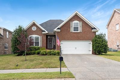 Spring Hill Single Family Home For Sale: 3028 Sommette Dr