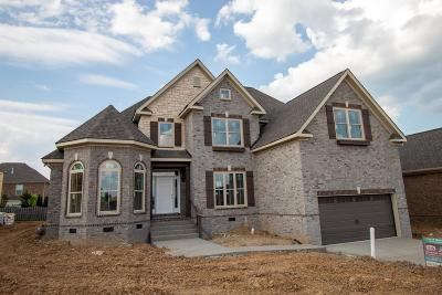 Spring Hill Single Family Home For Sale: 6003 Spade Dr Lot 192