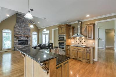 Sumner County Single Family Home For Sale: 1041 Somerset Downs Blvd