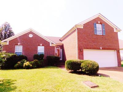 Joelton Single Family Home For Sale: 205 Baylee Mika Pl