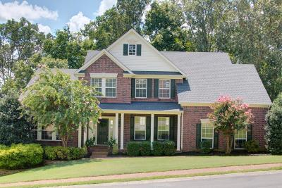 Hendersonville Single Family Home For Sale: 196 Spy Glass Way