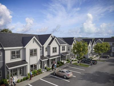 Nashville Single Family Home For Sale: 237 Thompson Park Drive