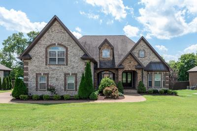 Mount Juliet TN Single Family Home For Sale: $465,000