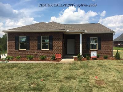 Pebble Creek, Pebblecreek Sec 1 Ph 1 Single Family Home For Sale: 2310 Sandstone Circle