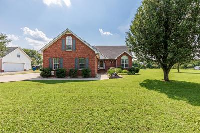 Murfreesboro Single Family Home For Sale: 4844 Manchester Pike