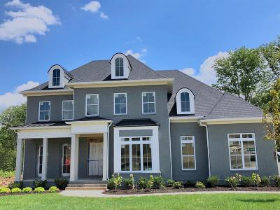 Nolensville Single Family Home For Sale: 1108 Lusitano Court Lot 2321