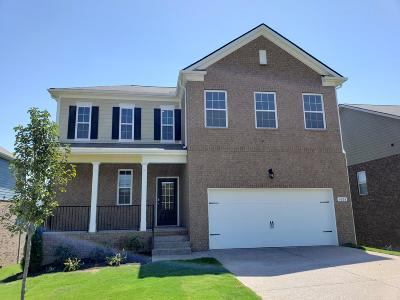 Smyrna Single Family Home For Sale: 4004 Grapevine Loop #603