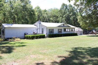 Dover Single Family Home For Sale: 505 Leatherwood Bay Rd