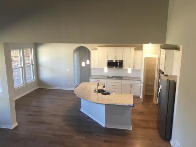 Murfreesboro Single Family Home For Sale: 1647 Burrows Avenue 60 Alp