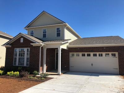 Spring Hill  Single Family Home For Sale: 782 Ewell Farm Drive #346