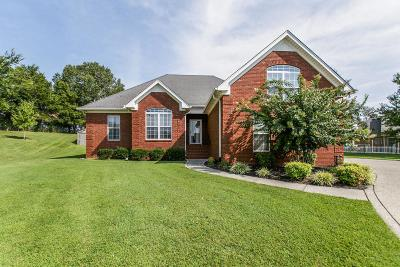 Sumner County Single Family Home For Sale: 114 Granite Ct