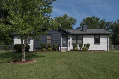 Hendersonville Single Family Home For Sale: 104 Scenic View Dr
