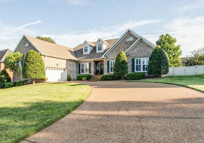 Hendersonville Single Family Home For Sale: 128 Ballentrae Dr