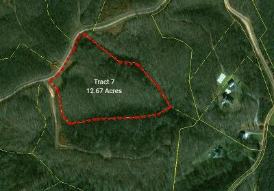 Dover Residential Lots & Land For Sale: Keel Hollow Rd - Tract 7