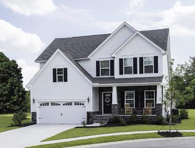 Smyrna Single Family Home For Sale: 924 Carnation Drive