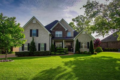 Spring Hill Single Family Home For Sale: 4050 Miles Johnson Pkwy