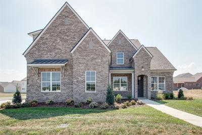 Nolensville Single Family Home For Sale: 209 Broadgreen Ln.