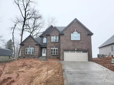 Clarksville Single Family Home For Sale: 192 Timber Springs