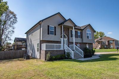 Cedar Hill, Adams Single Family Home For Sale: 2592 Hattington Dr