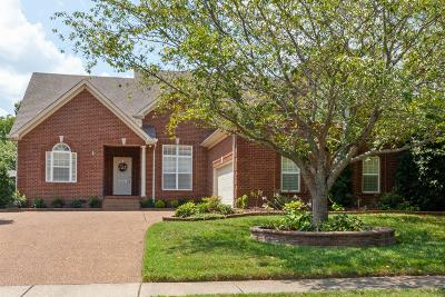 Spring Hill Single Family Home For Sale: 1169 McCoury Ln
