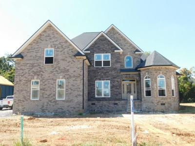 Murfreesboro Single Family Home For Sale: 2918 Beaulah Dr